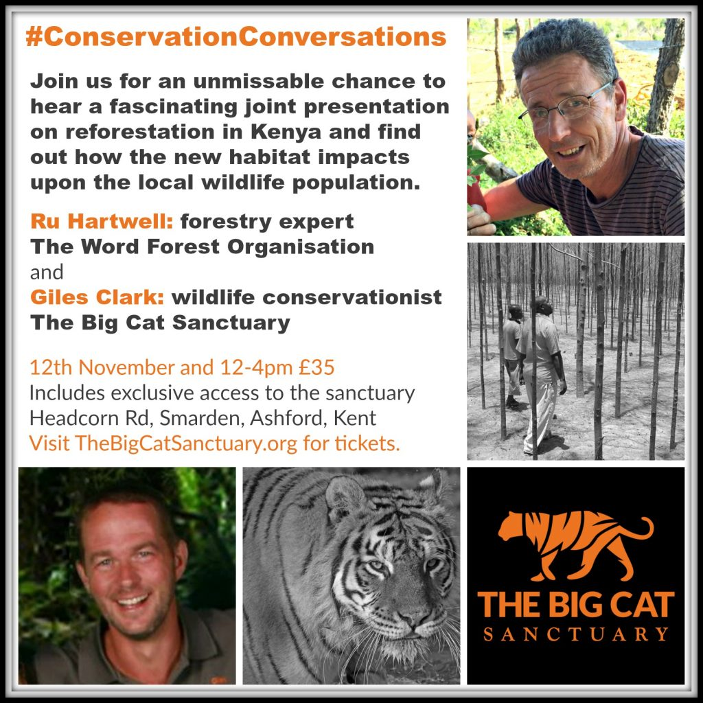 Big Cat and Reforestation Talk Poster