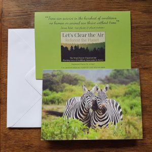 Chatty Zebra greeting card front, back and envelope