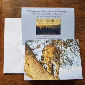 Stalking Leopard greeting card front, back and envelope