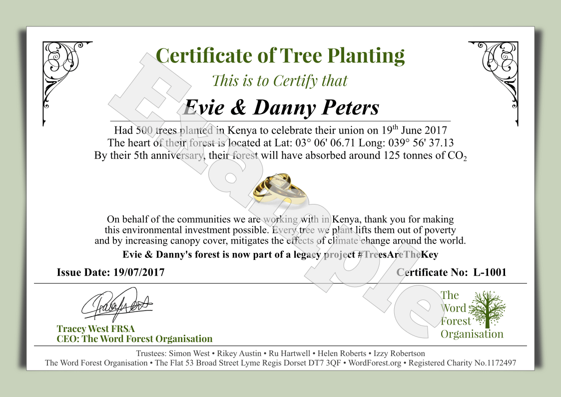 Tying the knot lets plant a forest certificate of planting showing the gps coordinates for your special plot of woodland and we can provide you with personalised thank you versions to yelopaper Gallery