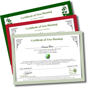 Tree gift certificates