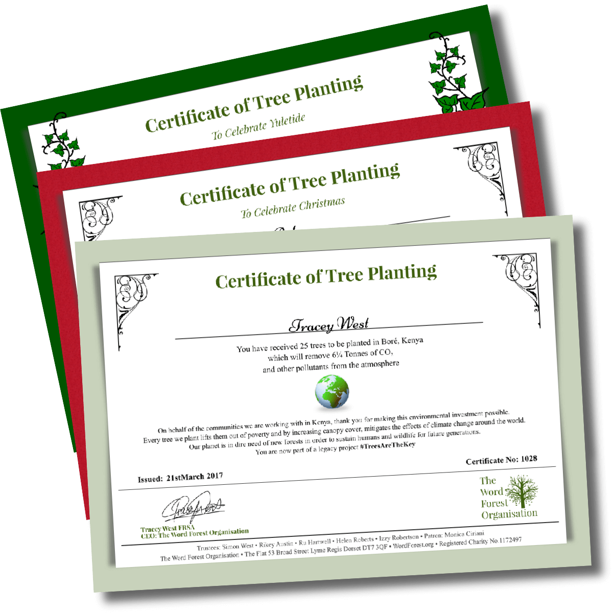 Give the gift of trees the word forest organisation tree gift certificates negle Gallery