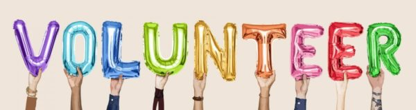 Volunteer at the Word Forest Organisation