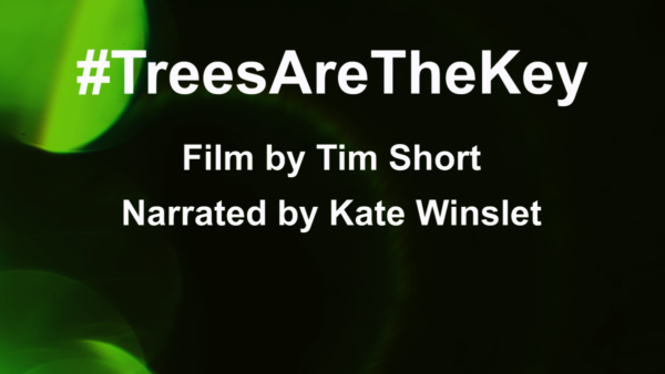 Poster for #TreesAreTheKey a film by Tim Short, narrated by Kate Winslet