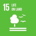 UN SDG 15 Life on Land