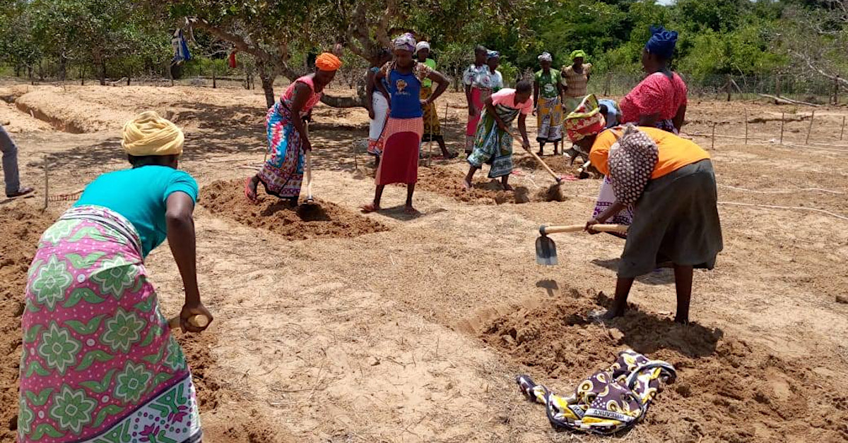 Mothers of the Forest preparing a permaculture food forest