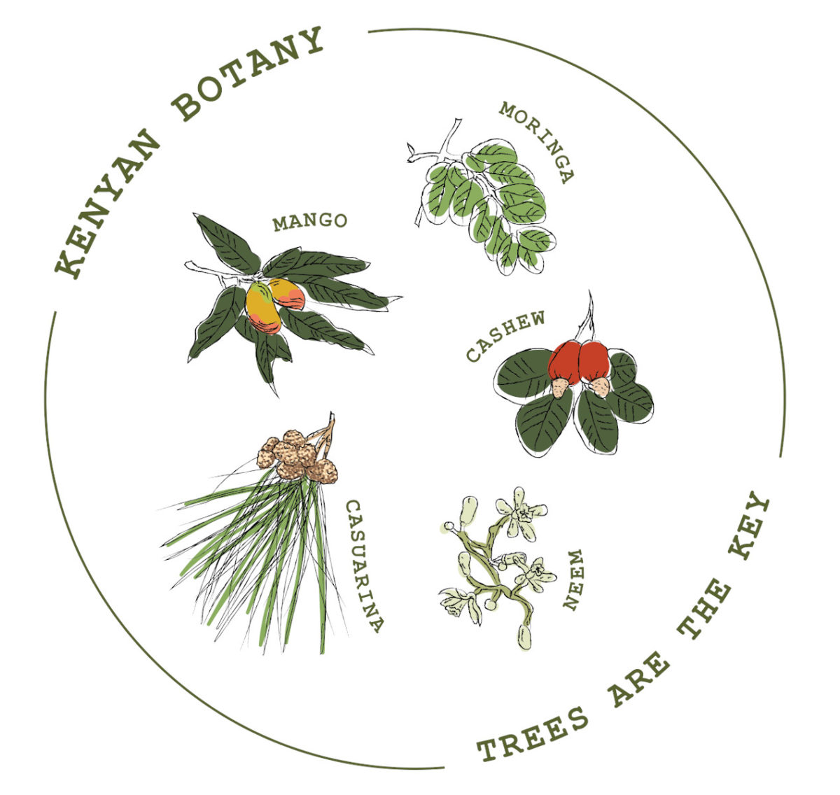 The Kenyan Botany Collection