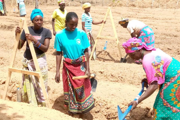 Mothers of the Forest practising permaculture with The Word Forest Organisation