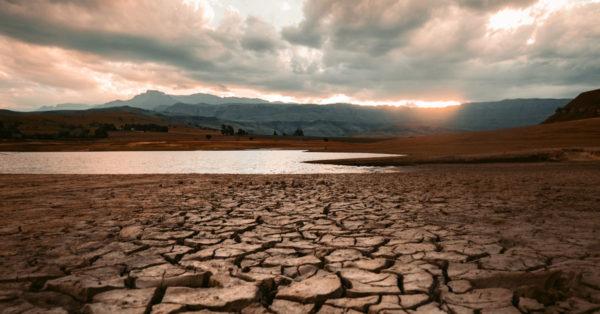 Drought-stricken land
