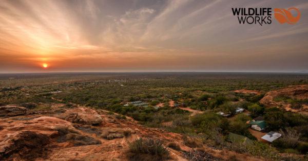 Wildlife Works logo on a Kenyan vista