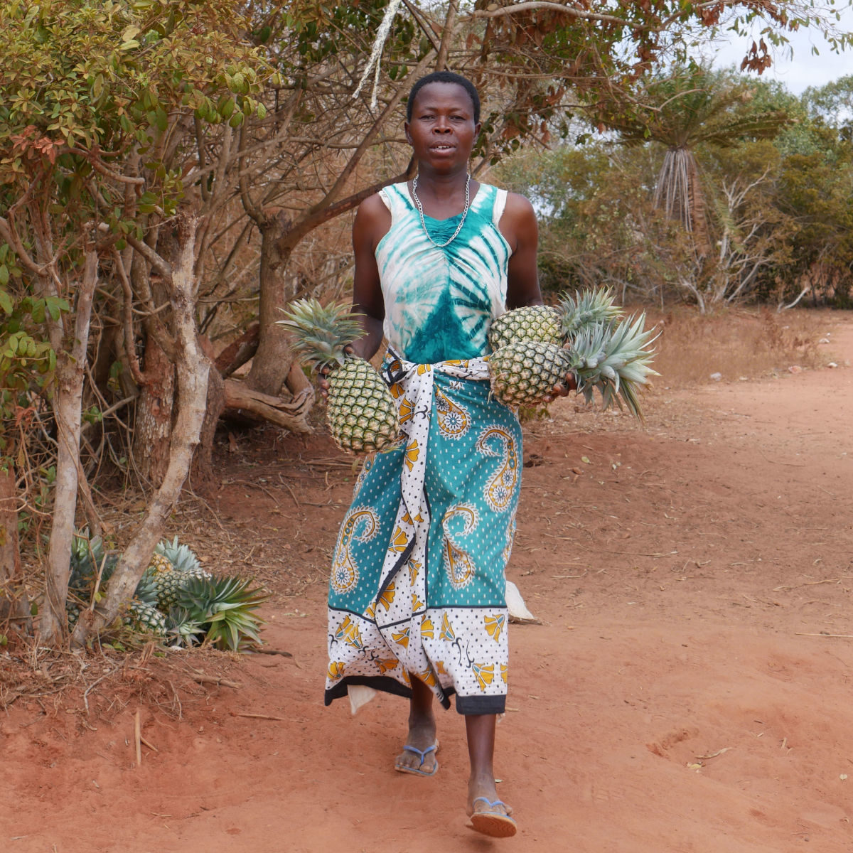 Woman carrying pineapples to sell