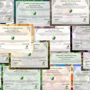 A selection of our certificates