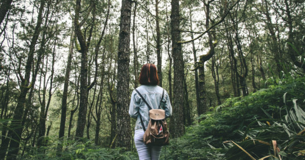 Woman walking in a forest. Image: IB Wira Dyatmika on Unsplash