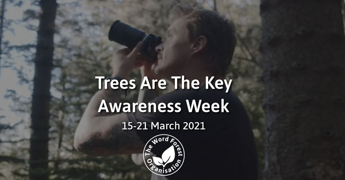 Trees Are The Key Awareness Week From The Word Forest Organisation