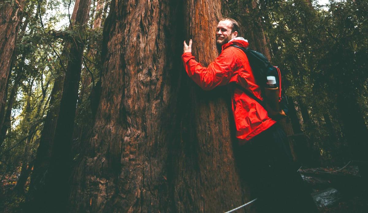 Man hugging tree image by KAL VISUALS on Unsplash