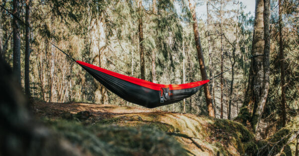 Hammock in the forest by independentwolf from Pixabay