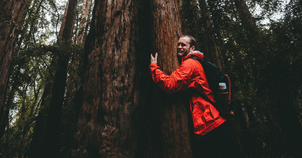 Man hugging a tree in the forest by Kal Visuals on Unsplash