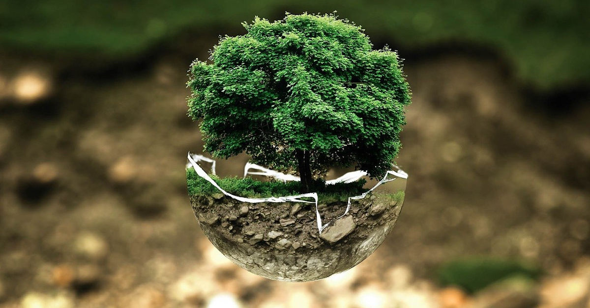 Tree in a floating sphere of earth
