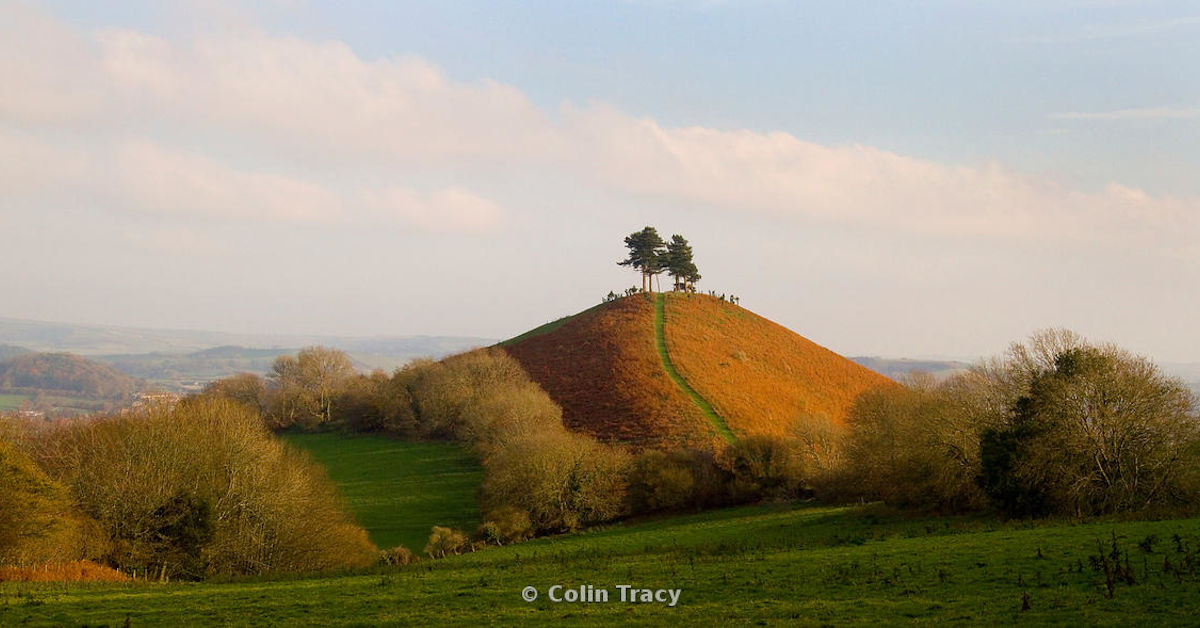 Colmers Hill by Colin Tracy