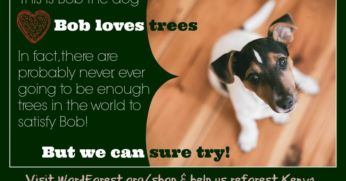 Bob the Dog Supports The Word Forest Organisation