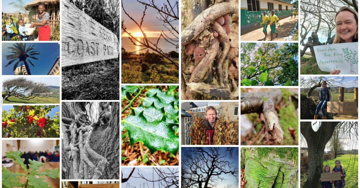 Photo competition gallery