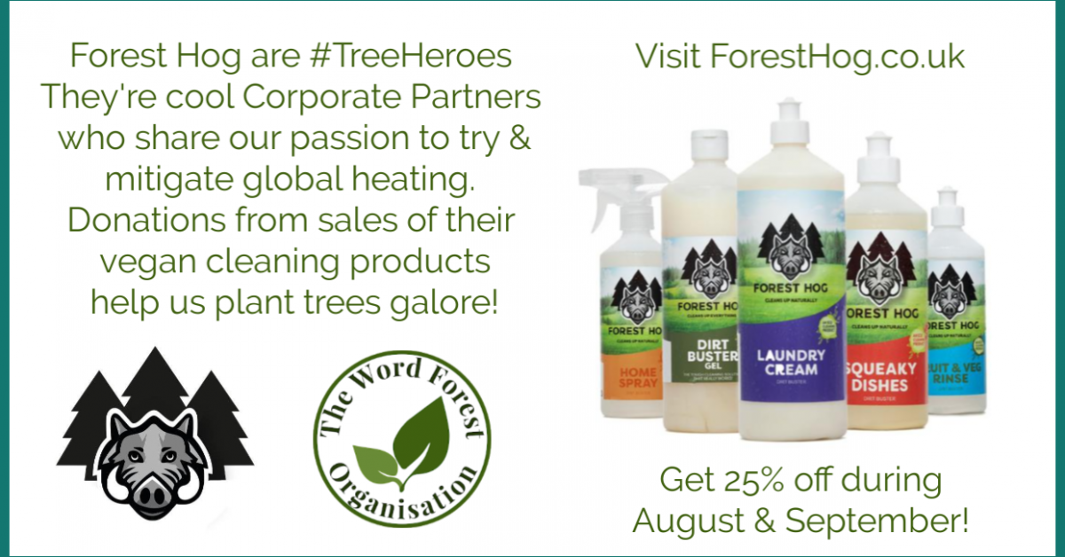 Poster showing special offers from corporate partners, Forest Hog for The Word Forest Organisation
