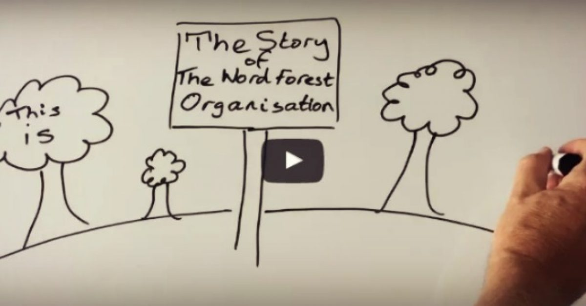 Trailer Poster for The Story of The Word Forest Organisation