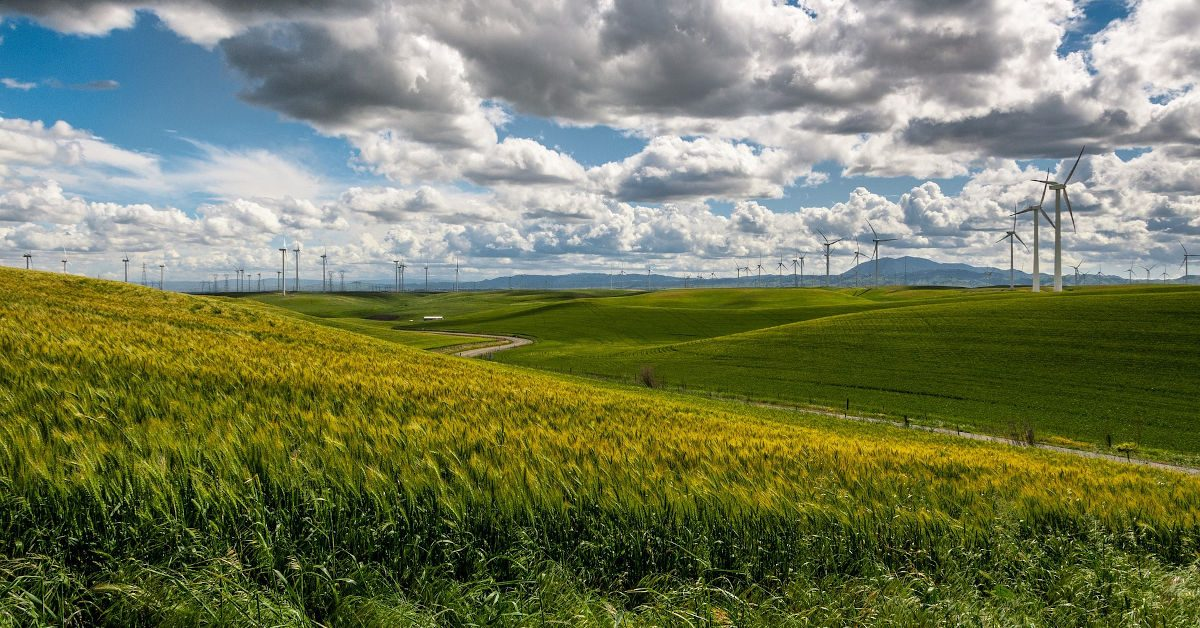 Wind turbines over grassy fields by Free-Photos from Pixabay